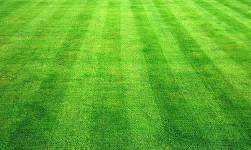 Lawn service lancaster pa